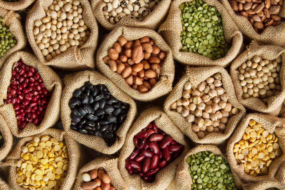Is There a Problem When It Comes to Grain Free Dog Food?