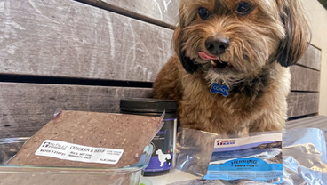 The Complete Guide to Storing, Handling and Cleaning While Dealing with Raw Pet Food