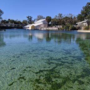 רוד טריפ בפלורידה והסביבה - חלק 2