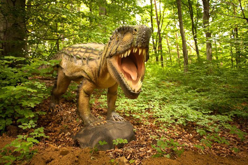 פארק הדינוזאורים