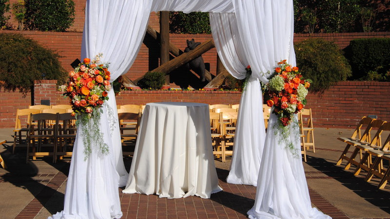 Ceremony Canopy 10*10 with Draping