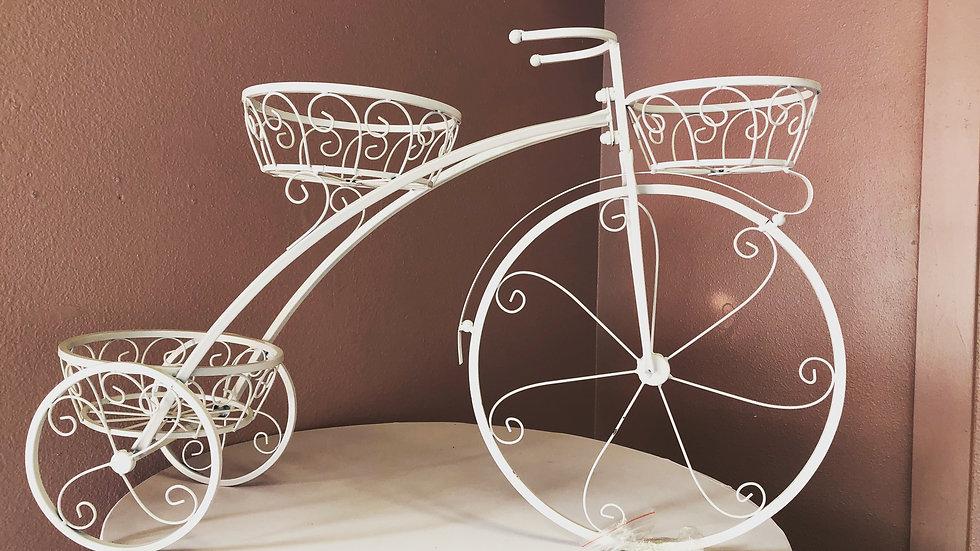 Spring Time Bicycle
