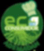 eco-consumidor-modelo-4-258x300.png