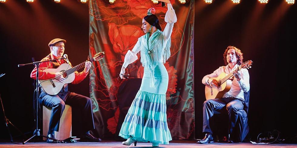 Flamenco Trio with David Chiriboga