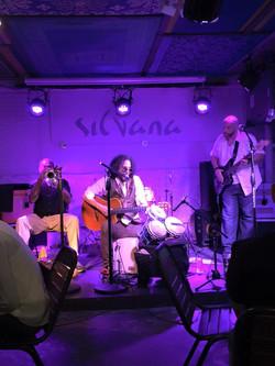 NYC Harlem Silvana