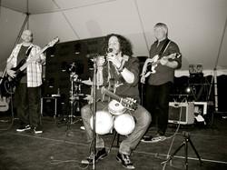 Brooklyn Concert Under The Tent