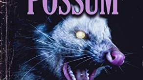 """Playing Possum"" by Stephanie Rabig"