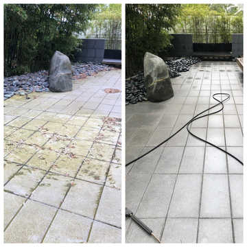 Pond - Before/After