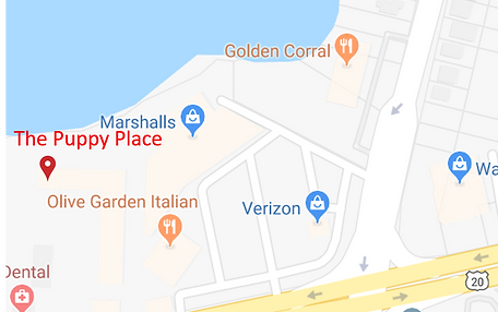 map with pin.png