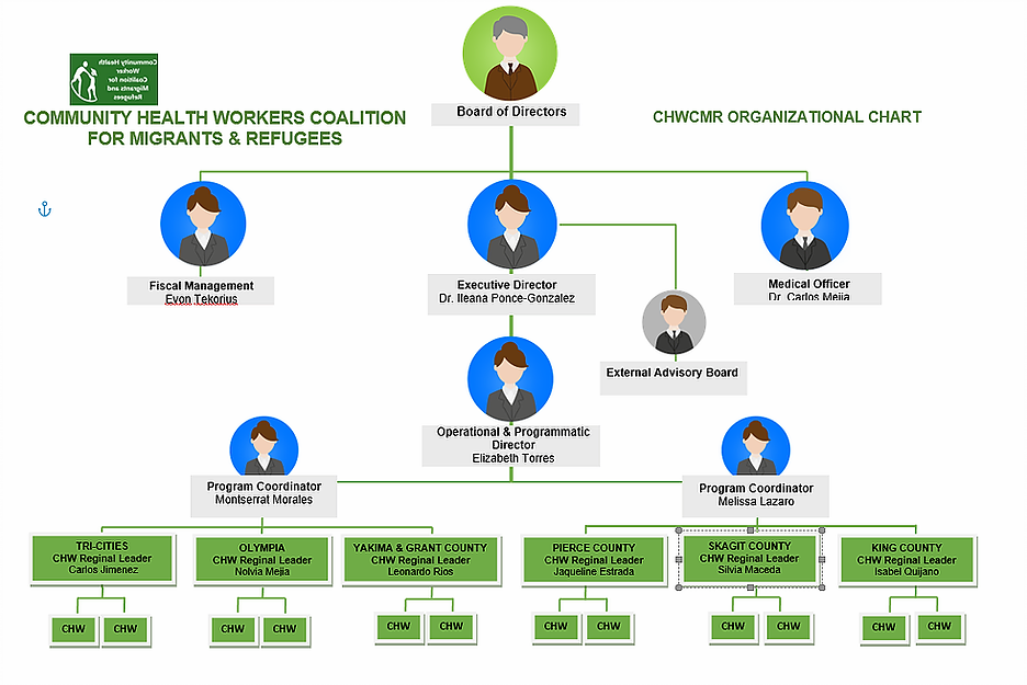 Organizational chart.webp