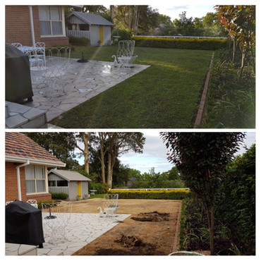 Lawn Removal and Replacement