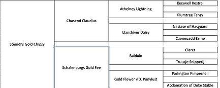 Steindl's Gold Chipsy.jpg