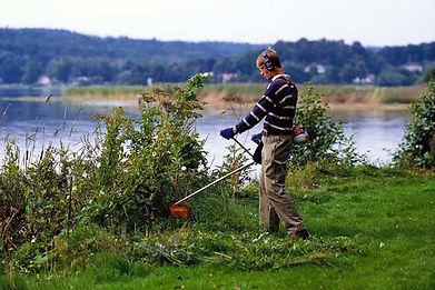 Покос травы в Ярославле