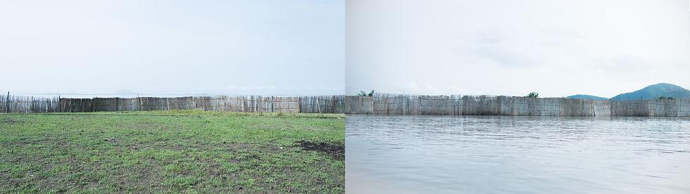 The Reed Wall.jpg