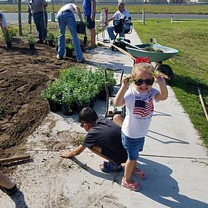 Gardening Day (80 plants)