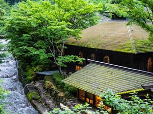 Cedar Bark Roofing at Hoshi Onsen Chojukan
