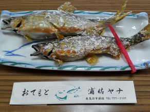 River Fish in Urasa