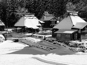 Snow Country Tours on Snow Japan