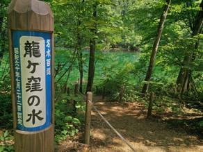 Ryuugakubo Pond
