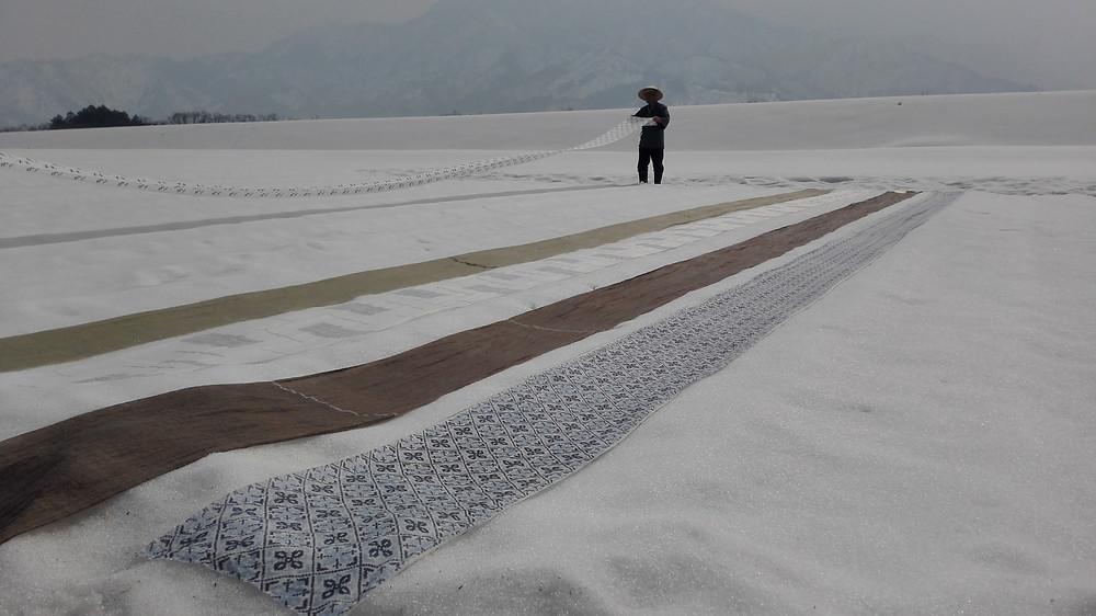 Yukisarashi Snow Bleaching