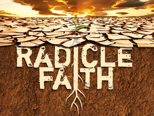 Radicle Faith