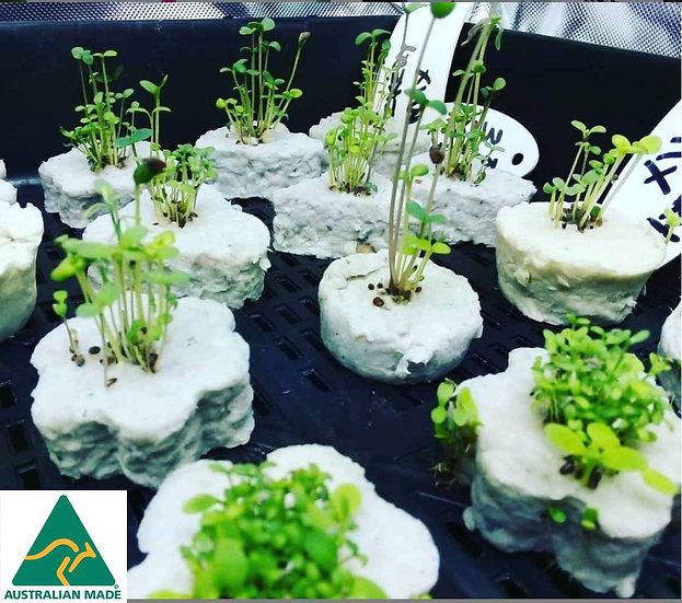 Germination Eco-Cubes Veggies box