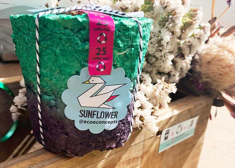 Flowers Eco-ColourPot