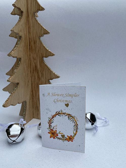 Plantable Christmas gift card bundle