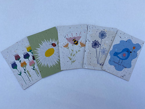 Birds Bees Bugs Bundle Gift Cards