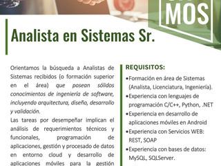 Analista en Sistemas Sr.