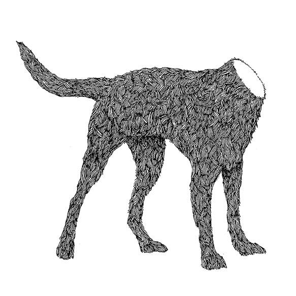 the headless dog, David Galletly