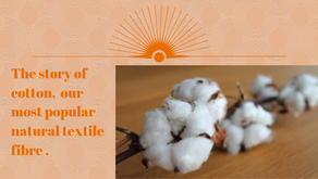Cotton is everywhere. How did it come to this? What is in store for cotton in the future?