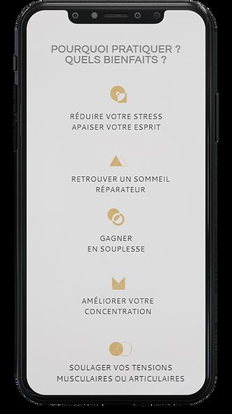 mobile pour page produit - julien aptel.