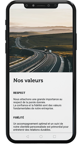 mobile pour page produit - dv2f.png