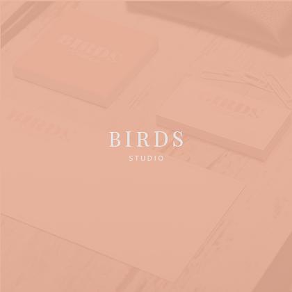 BIRDS Studio