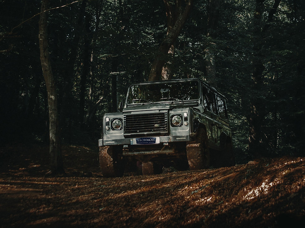 land rover by moss 3.jpg