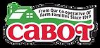 Cabot_Logo_396x192_72_RGB.png