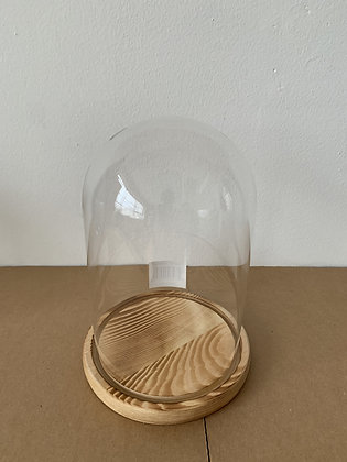 Glass Cloche W/ Wooden Bottom