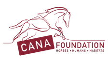 CANA_Foundation_Logo-red-horses.png