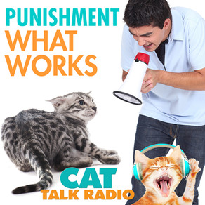 Punishment - What works and what doesn't