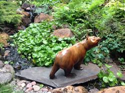 Bear Inspection!