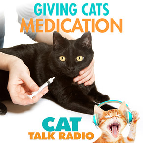 Giving Medication to Cats