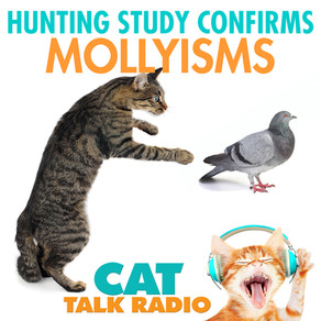 Hunting Study Confirms Mollyisms