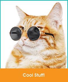 CoolStuff_CBSsite.jpg