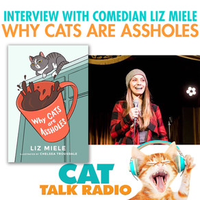 Why Cats Are Assholes with Liz Miele