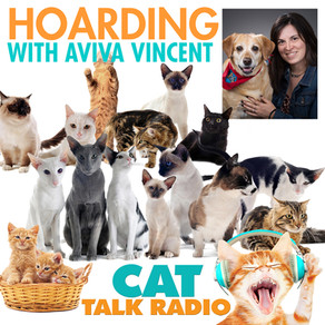 Hoarding - with Aviva Vincent