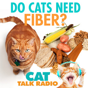 Do cats need fiber?