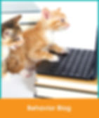4-Blog.jpg