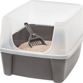Open Top Litter Boxes