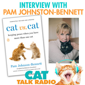 Cat vs Cat - Interview with Pam Johnson-Bennett